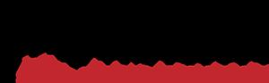FV Proyectos Logo